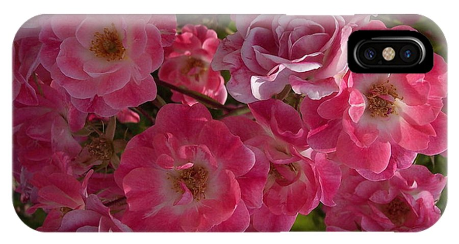 Pink Roses IPhone X Case featuring the photograph My Cup Runneth Over by Georgia Hamlin