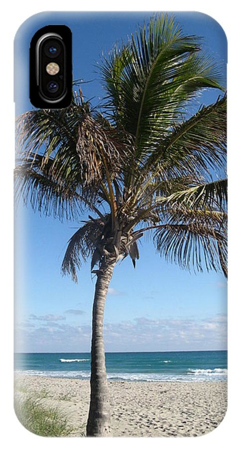 Palm Tree IPhone X Case featuring the photograph My Heaven by Catie Canetti
