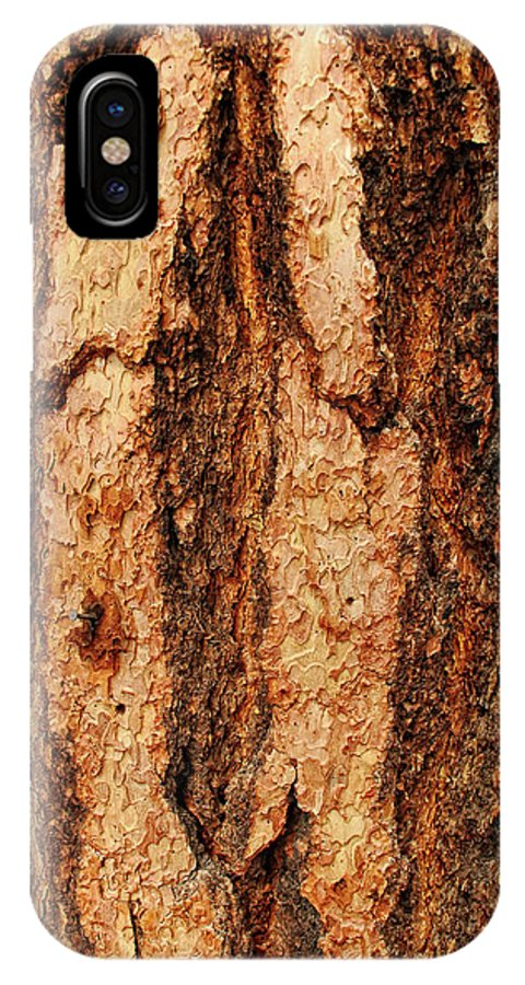 Tree IPhone X Case featuring the photograph Nailed by Donna Blackhall