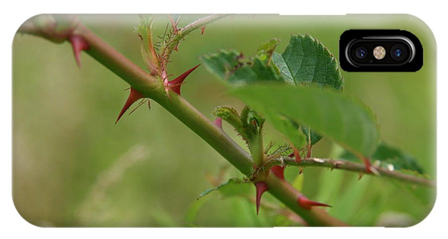 Thorn IPhone X Case featuring the photograph Natural Armor by Neal Eslinger