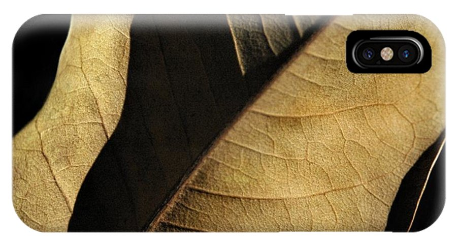 Nature IPhone X Case featuring the photograph Natural Seduction by Dan Holm