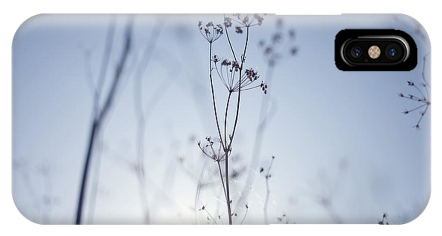 Nature IPhone X Case featuring the photograph Nature by Joy Hsieh