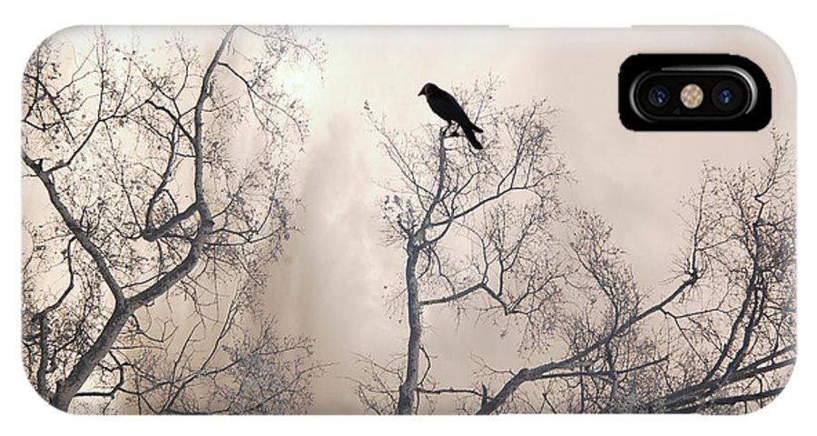 Gothic Nature Photo IPhone X Case featuring the photograph Nature Raven Crow Trees - Surreal Fantasy Gothic Nature Raven Crow In Trees Sepia Print Decor by Kathy Fornal