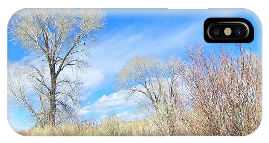 Sky IPhone X Case featuring the photograph Natures Artwork by Marilyn Diaz