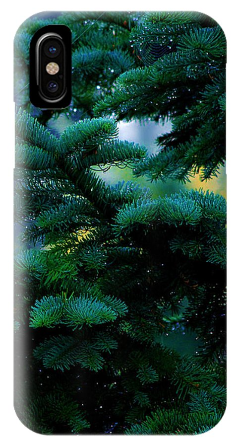 Christmas Tree IPhone X Case featuring the photograph Nature's Christmas Tree by Jeanette C Landstrom
