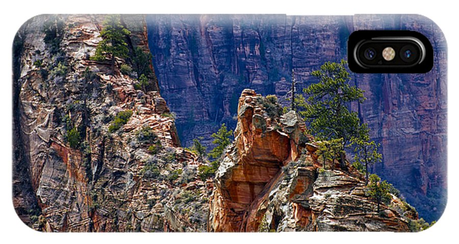 Zion National Park Utah Parks Tree Trees Mountain Mountains Texture Textures Landscape Landscapes IPhone X Case featuring the photograph Near The Top by Bob Phillips