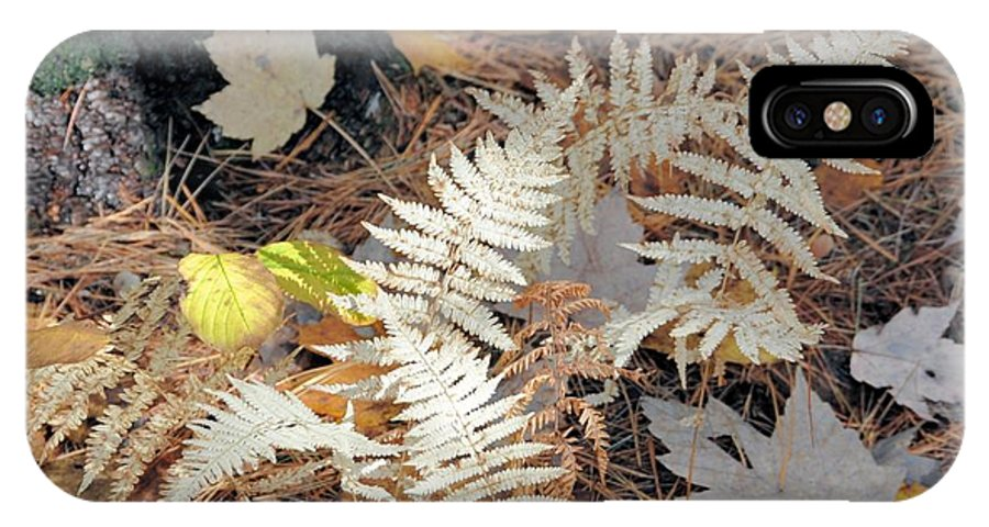 Fern IPhone X Case featuring the photograph Needles And Leaves by Valerie Kirkwood