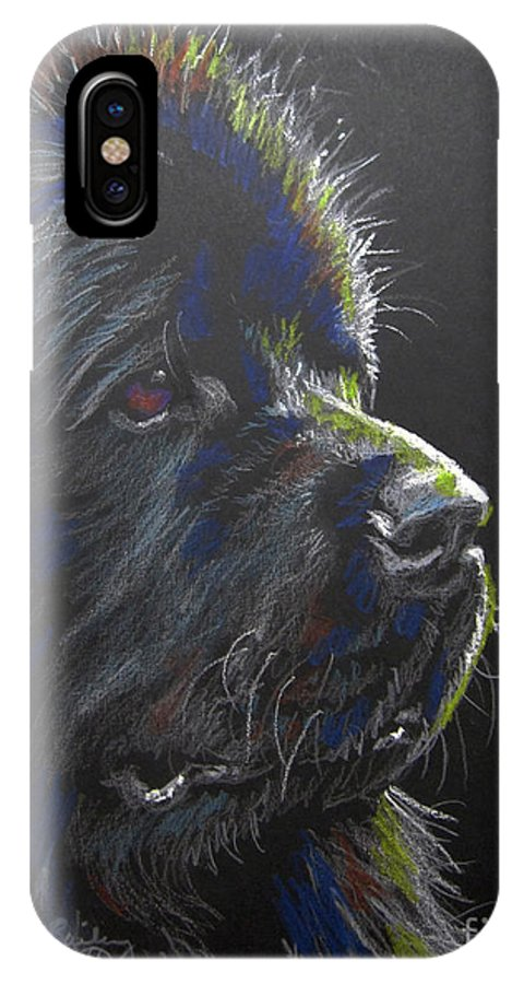Newfoundland IPhone X Case featuring the pastel Newfoundland by Nancy J Bailey