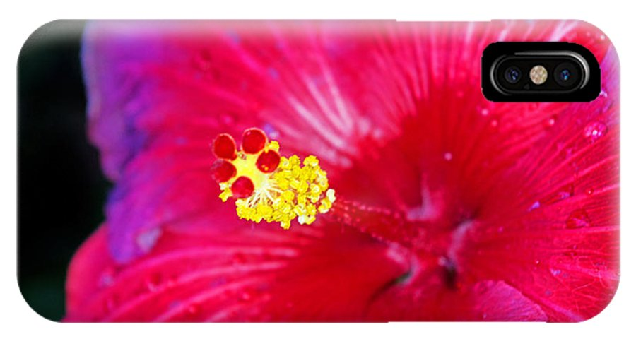 Flowers IPhone X / XS Case featuring the photograph Night Fire Hibiscus by Rich Walter