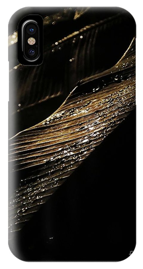 Night Photography IPhone X Case featuring the photograph Night Leaves by Lizi Beard-Ward