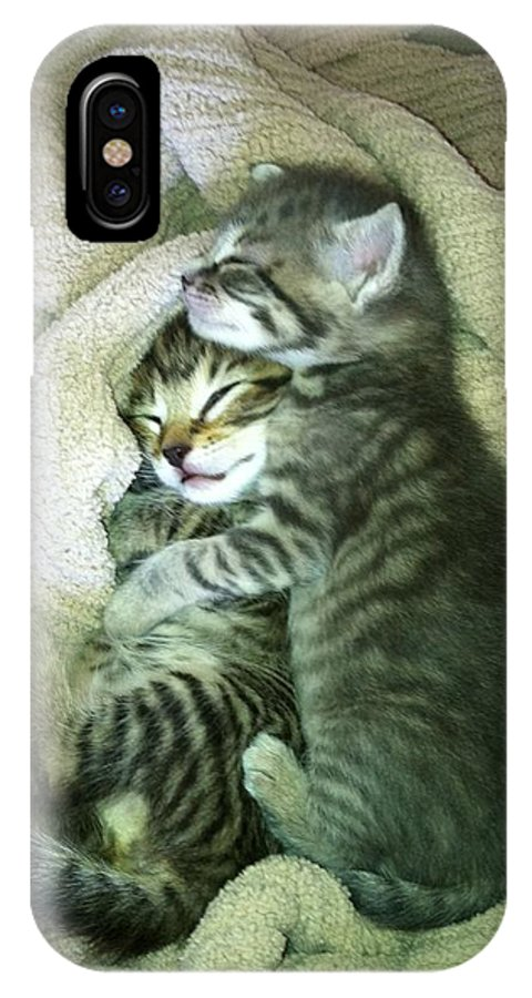 Kittens IPhone X Case featuring the photograph Night Night Kitties by Sabrina Diotte