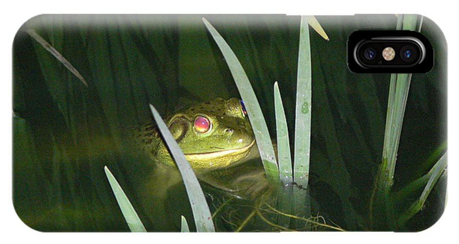 Frog IPhone X Case featuring the photograph Night Stalker by Linda Barone