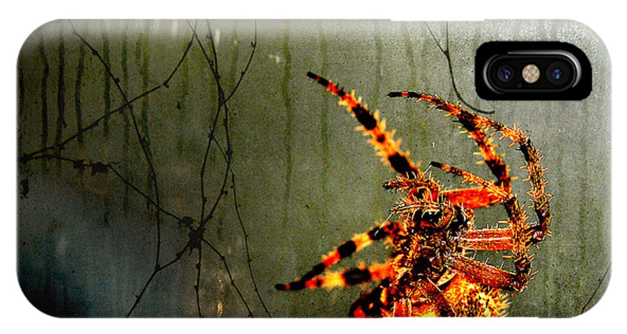 Spider IPhone X Case featuring the photograph Nightmares by Karen Slagle