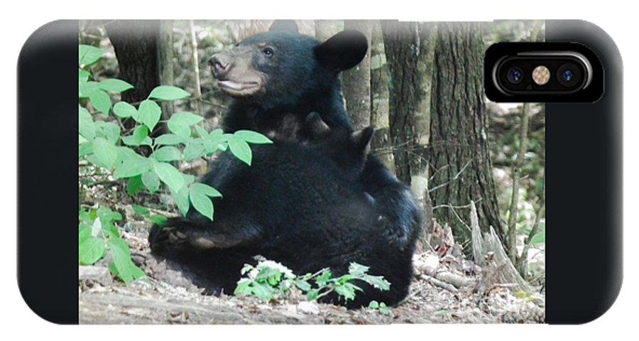 Bear IPhone X Case featuring the photograph Bear - Cubs - Mother Nursing by Jan Dappen