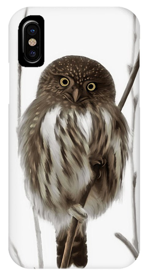 Northern Pygmy Owl IPhone X Case featuring the painting Northern Pygmy Owl - Little One by Beve Brown-Clark Photography
