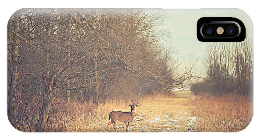 November IPhone X Case featuring the photograph November Deer by Carrie Ann Grippo-Pike