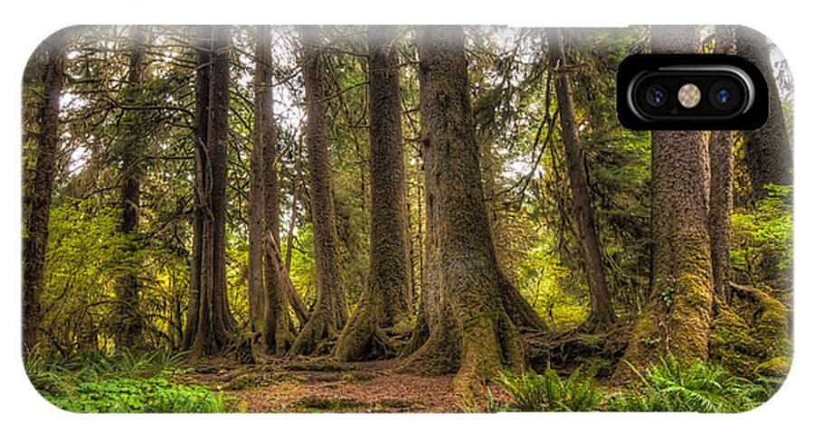 Hoh Rain Forest IPhone X Case featuring the photograph Nursery Log by Rich Leighton