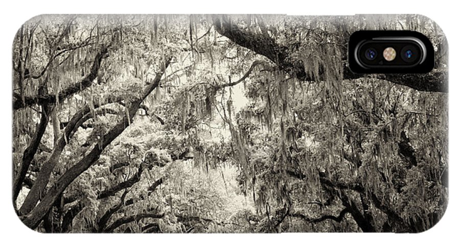 Charleston IPhone X Case featuring the photograph Oak Trees Of Charleston South Carolina In Sepia by Stephanie McDowell