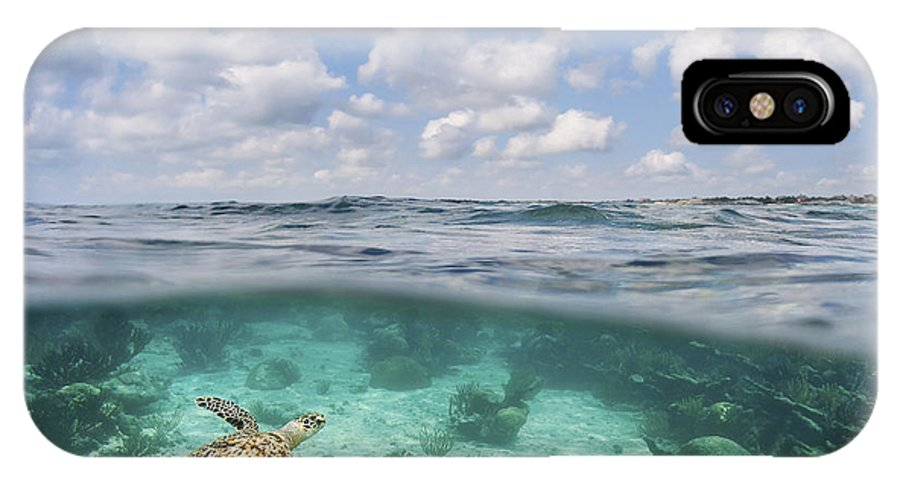 Amazing IPhone X Case featuring the photograph Ocean Turtle - Split View by M Swiet Productions