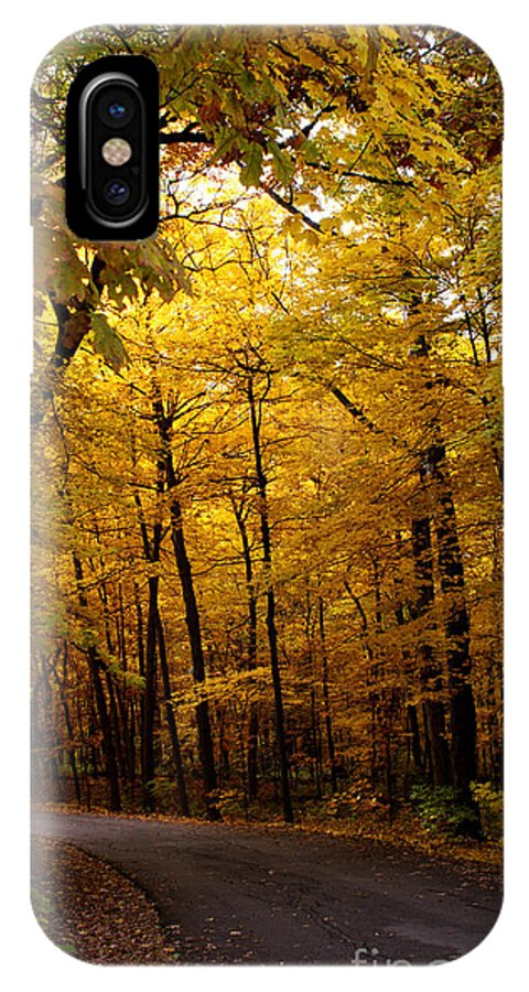 Leaves IPhone X Case featuring the photograph October Road by Valerie Fuqua