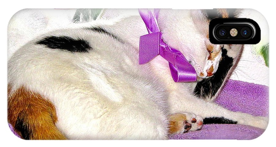 Kitty IPhone X Case featuring the photograph Oh No Not A Ribbon by Phyllis Kaltenbach