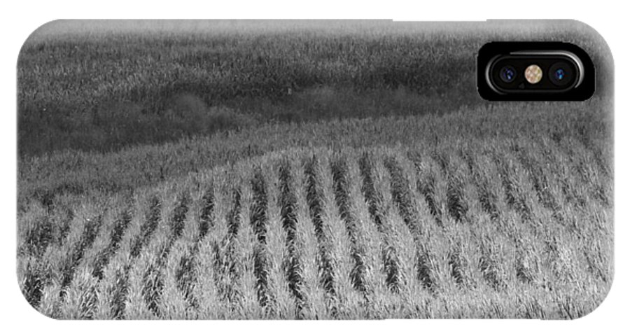Black And White Cornfield IPhone X Case featuring the photograph Ohio Cornfield by Dan Sproul