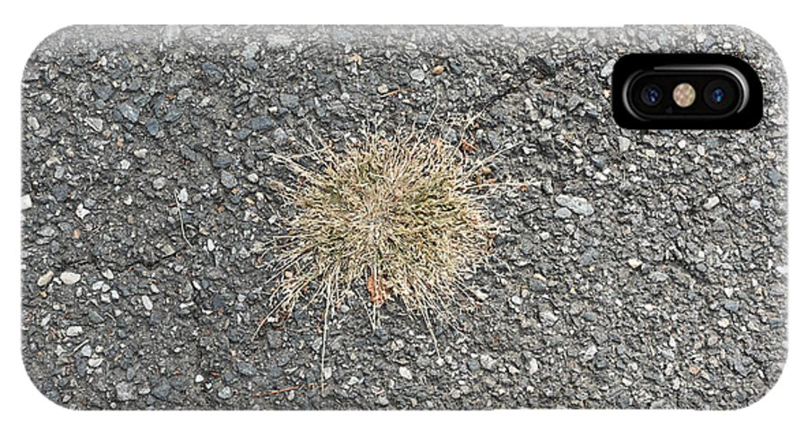 Abstract IPhone X Case featuring the photograph Old pavement with old grass by Adrian Bud