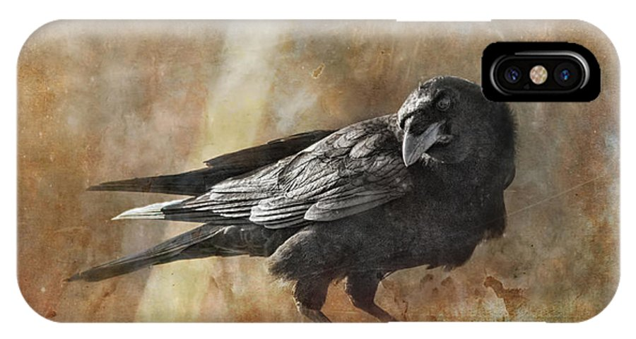Raven IPhone X Case featuring the photograph Old Rascal by Susan Capuano