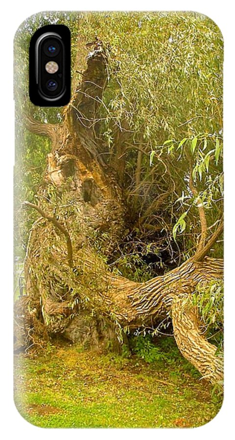 Tree IPhone X Case featuring the photograph Old Willow by Stephanie Moore