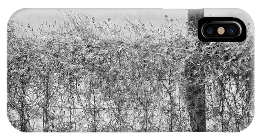 Wildflowers IPhone X Case featuring the photograph On The Fence Bw by Carolyn Marshall