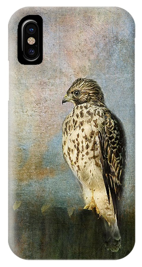 Bird IPhone X Case featuring the photograph On The Fence by Jai Johnson