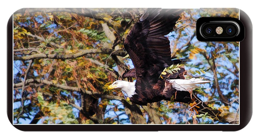 Bald Eagle IPhone X Case featuring the painting On Wings Of Eagles -in Brown by Jill Dunham