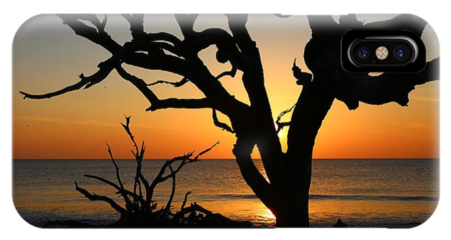 Jekyll Island IPhone X Case featuring the photograph Once A Mighty Oak by Marty Fancy