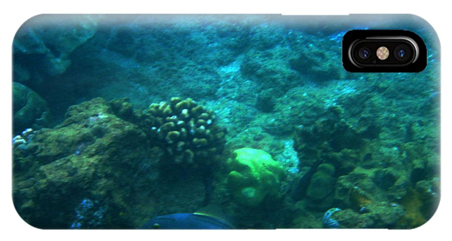 Maui IPhone X Case featuring the photograph One Fish Blue Fish by Catherine Rogers