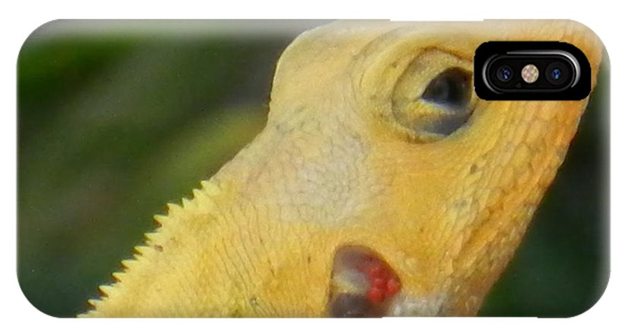 Lizard IPhone X Case featuring the photograph One Happy Lizard by Latisha Wolf
