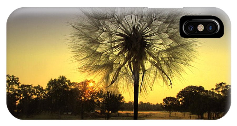 Morning IPhone X Case featuring the photograph One Of Those Magical Mornings by Joyce Dickens