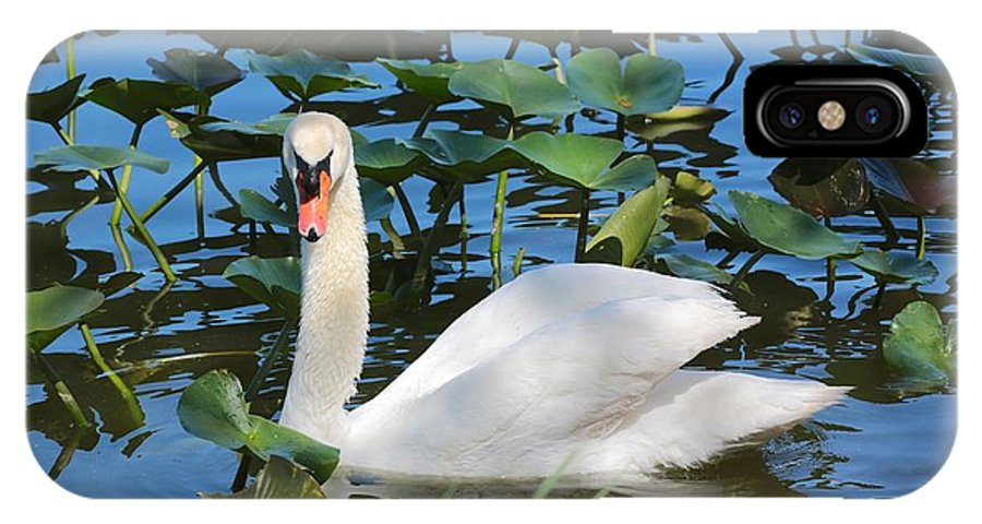 Swan IPhone X Case featuring the photograph One Swan In The Lilies by Carol Groenen