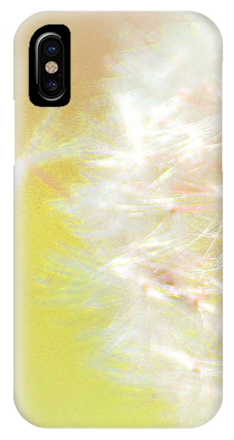 Dandelions IPhone X Case featuring the photograph One Wish by The Art Of Marilyn Ridoutt-Greene