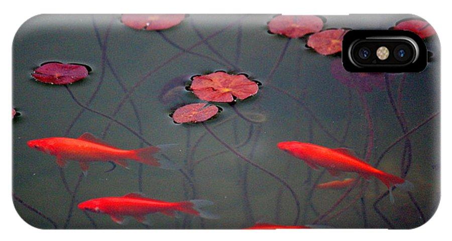 Lilypad IPhone X Case featuring the photograph Orange Alive by Rosanne Jordan