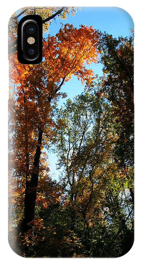 Leaves IPhone X Case featuring the photograph Orange Glowing Tree by Rebecca Reed