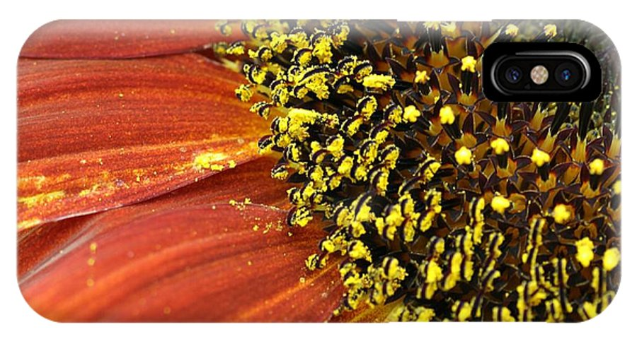 Sunflower IPhone X Case featuring the photograph Orange Sunflower Close Up by Christiane Schulze Art And Photography