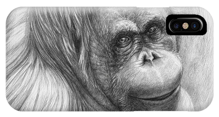 Orangutan IPhone X Case featuring the drawing Orangutan - Pongo Pygmaeus by Svetlana Ledneva-Schukina