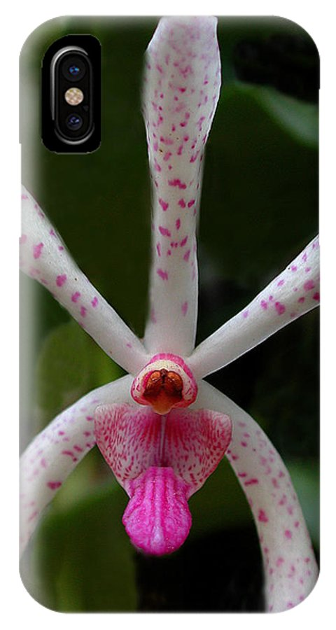 Orchid IPhone X Case featuring the photograph Orchid Beauty by Bill Marder