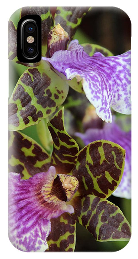 Orchid IPhone X Case featuring the photograph Orchid Five by Mark Steven Burhart