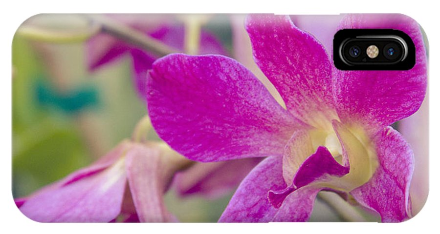 Aloha IPhone X / XS Case featuring the photograph Orchid - Haliimaile Spring Pink by Sharon Mau
