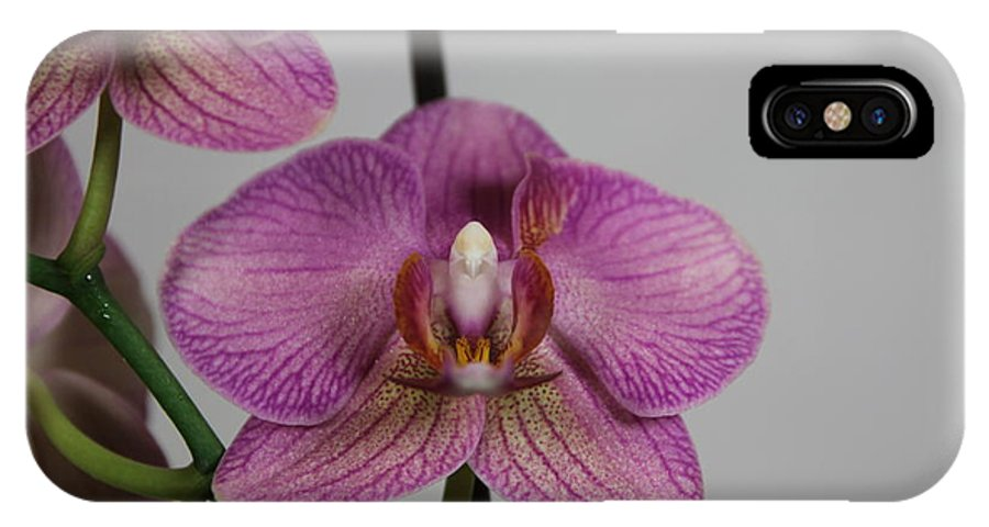 Flowers IPhone X Case featuring the photograph Orchid13 by George Christoff