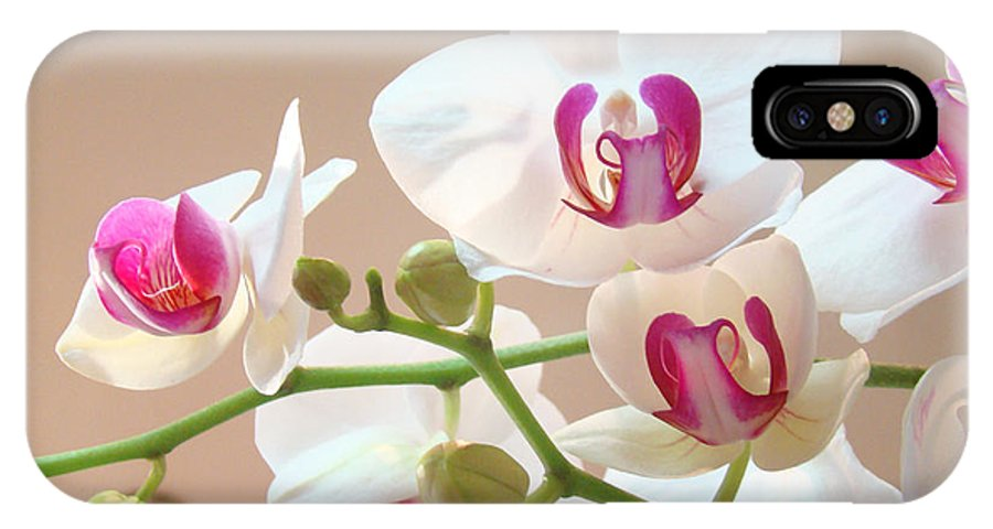 White IPhone X Case featuring the photograph Orchids Pink White Floral Art Prints by Patti Baslee