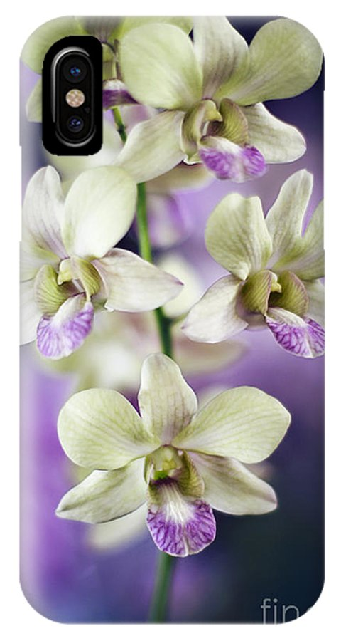 Hawaii IPhone X Case featuring the photograph Orchids by Sylvia Cook