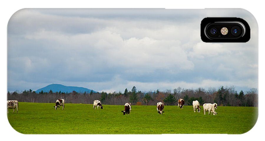 Pasture IPhone X Case featuring the photograph Out To Pasture by Alana Ranney