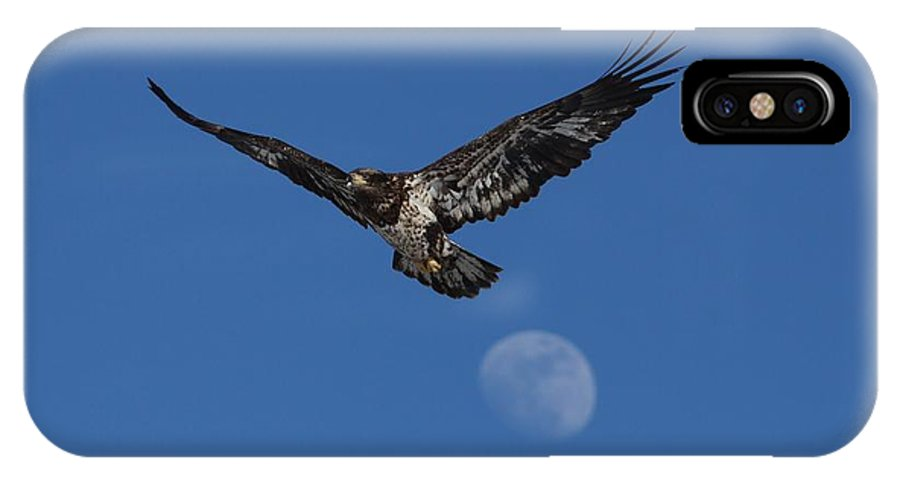 Bald Eagle IPhone X Case featuring the photograph Over The Moon by Teresa McGill